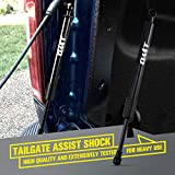 Fits 15-19 F150 Tailgate Assist
