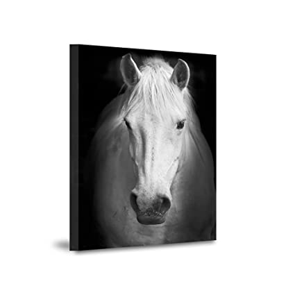 Amazon.com: VV ART Black and White Horse Painting Canvas Wall Art ...