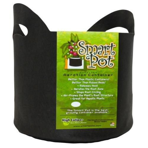 Smart Pot Black 15 Gallon w/ handles (50/Cs) ()