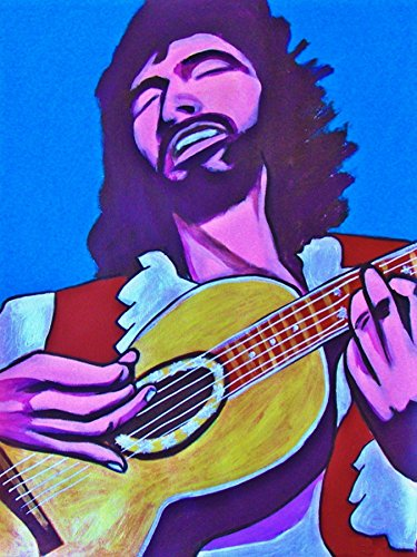 CAT STEVENS PRINT POSTER guitar Folk Rock Teaser and The Firecat cd Ovation record album wall art man cave