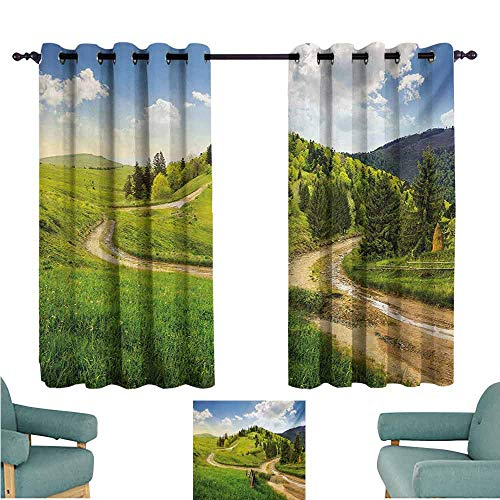 DONEECKL Kids Room Curtains Landscape Hillside Meadow Cloudy Sky Fence Near The Cross Road with Fir Trees on Both Sides Blackout Draperies for Bedroom Window W55 xL45 Green Blue
