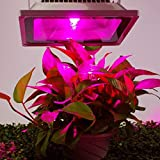 Esco Lite 30 Watt Plants Growing Led Lights indoor Bulbs waterproof for housing tomatoes hydroponics Greenhouse, Model: , Home & Outdoor Store
