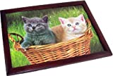 Kittens in a Basket Bean Bag Cushioned Lap Tray