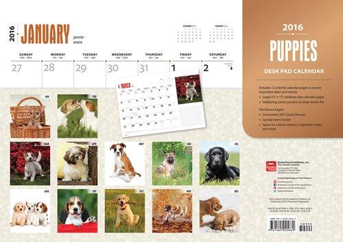 Puppies - 2016 Calendar Desk Pad 17 x 12in (Desk Puppies Calendar Pad)
