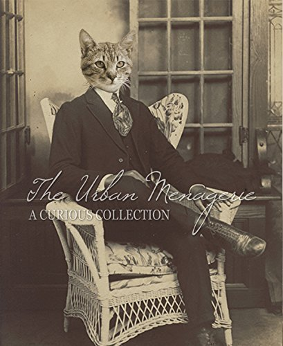 [Anthropomorphic Portrait, Cat in Chair Art Print, Multiple Sizes Available, Unframed] (Inanimate Object Costume)
