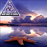 Dark Reflections from the Waters by Secret Society of Starfish (2011-11-11)