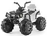 Rocket Kids Dune Raptor Extreme 12v Electric / Battery Ride On Utility Quad Bike - White