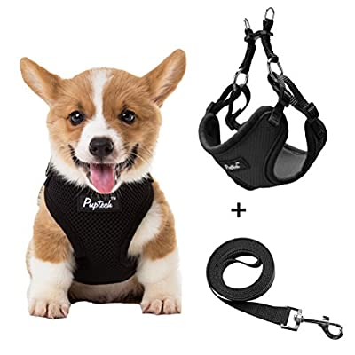 JIATECCO Small Dog Harness With Leash - Adjustable Soft Mesh Step In Vest for Puppy Walking Black