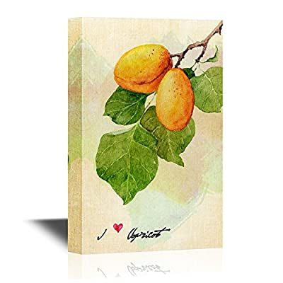 Vintage Style Fruit Painting, With a Professional Touch, Fascinating Technique
