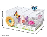 MidWest Homes for Pets Hamster Cage | Beautiful