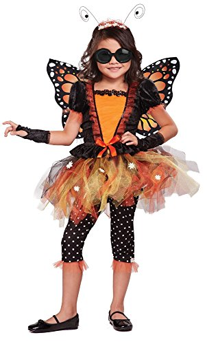 California Costumes Magnificent Monarch Costume, One Color, 8-10 (Monarch Butterfly Costume)
