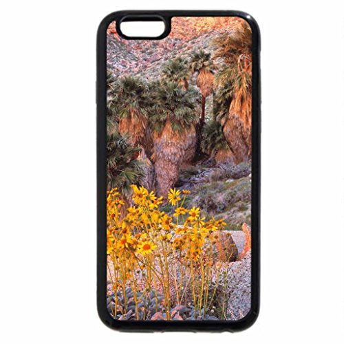 iPhone 6S / iPhone 6 Case (Black) Brittlebush at Sunrise