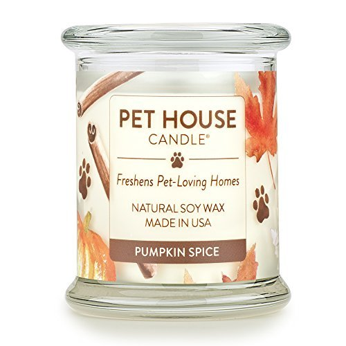 One Fur All - 100% Natural Soy Wax Candle, 20 Fragrances - Pet Odor Eliminator, Up to 60 Hours Burn Time, Non-Toxic, Eco-Friendly Reusable Glass Jar Scented Candles – Pet House Candle, Pumpkin Spice