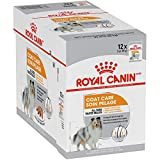 Royal Canin Canine Care Nutrition Coat Care Loaf in