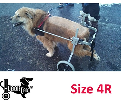 Huggiecart Dog Wheelchair for Dog 3-99 lbs 8 Sizes to Select to Fit Your Dog (4R-Medium Regular 40-70 lbs)