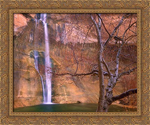 (Calf Creek Falls Cascading Down Sandstone Cliff with Desert Varnish, Escalante National Monument, Ut 24x20 Gold Ornate Wood Framed Canvas Art by Fitzharris,)