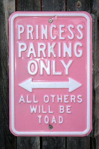 (FUNNY PARKING SIGN POSTER Princess Parking Only RARE HOT NEW 24x36)