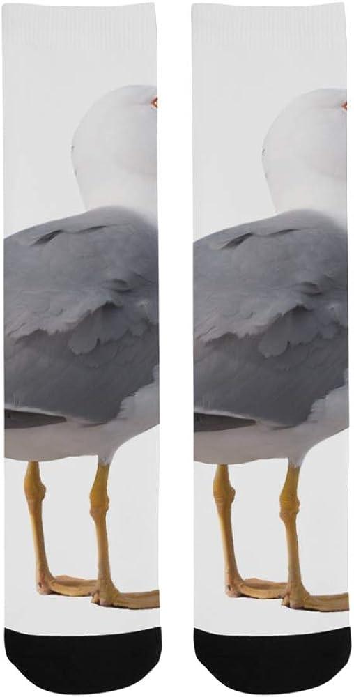 Flying Seagull White Birds In Sky Crazy Dress Troser Sock For Men Women Botts