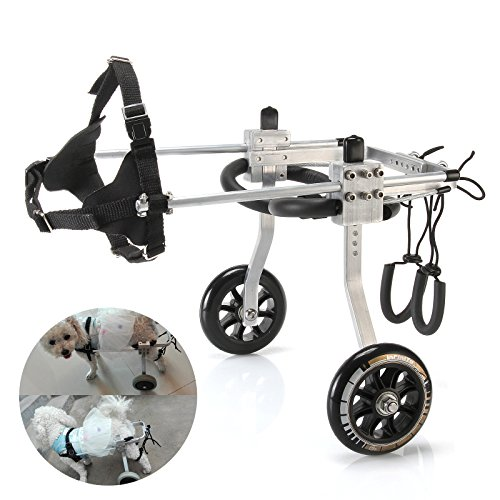 Anmas Sport Adjustable Dog