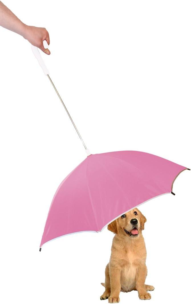 Best Dog umbrella with leash 3