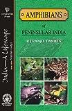 India Travel Guides, R. R. Daniels, 8173715149