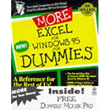 More Excel for Windows 95 for Dummies