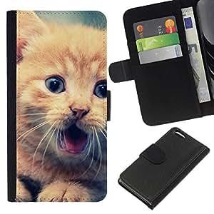 // PHONE CASE GIFT // Moda Estuche Funda de Cuero Billetera Tarjeta de crédito dinero bolsa Cubierta de proteccion Caso Apple Iphone 5C / Cute Orange Kitten /