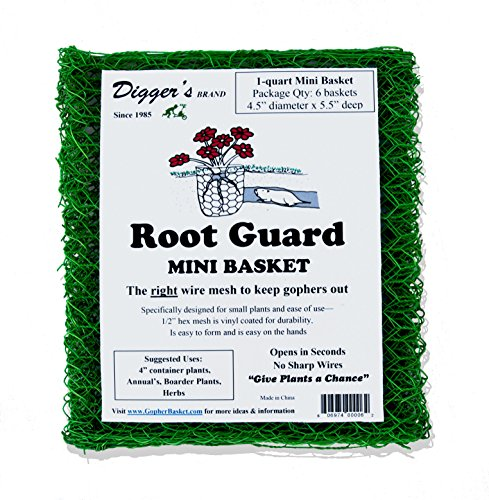 Diggers Bulk Pack - 24 Qty Mini RootGuard Heavy Duty Gopher Wire Baskets