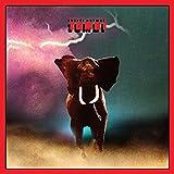 Spirit Animal [Vinyl]