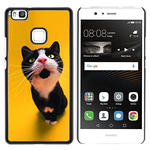 STPlus Gato en una caja Animal Carcasa Funda Rigida Para Huawei P9 Lite #30