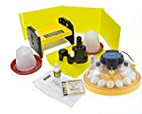 Brinsea Products USAC26CP Maxi II Advance 14 Egg Incubator Classroom Pack, One Size review