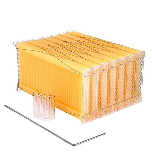 Seeutek 7Pcs Auto Flow Honey Beehive Frame Honey Harvesting Tubes and a Harvest Key for Beekeepers Food Grade BPA Free (Honey Beehive Frame) by Seeutek