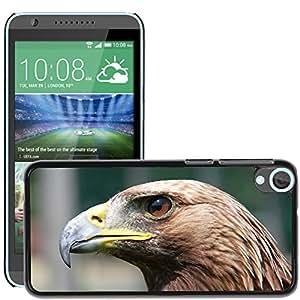 Super Stella Slim PC Hard Case Cover Skin Armor Shell Protection // M00103782 Adler Raptor Bird Of Prey Bird // HTC Desire 820