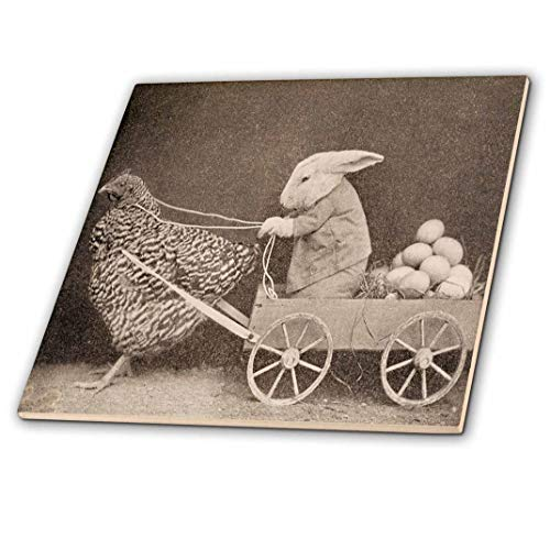 (3dRose ct_37253_3 Victorian Photo Rooster Pulling Bunny Ceramic Tile, 8