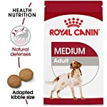 Royal Canin Size Health Nutrition Medium Adult Dry Dog Food 8
