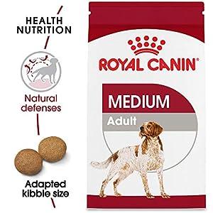 Royal Canin Size Health Nutrition Medium Adult Dry Dog Food 15