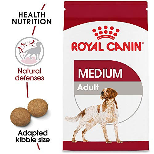 Royal Canin Size Health Nutrition Medium Adult Dry Dog Food, 6 Lb