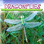 Dragonflies | Jason Cooper