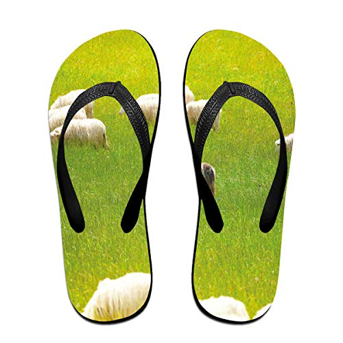 Funny Summer Flip Flop, Black Sheep Between White Goats On Grass Field Meadow Animal Farm LandscapeFor Children Adults Men and Women Beach Sandals Pool Party Slippers ()