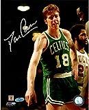 Steiner Sports NBA Boston Celtics Dave Cowens Vertical 8x10 Photo