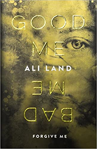 Good Me, Bad Me Book Cover