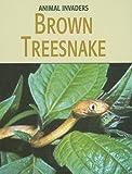 Brown Treesnake, Barbara Somervill, 1602792399