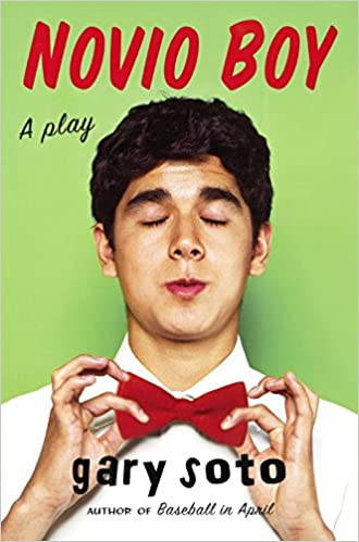 Descarga gratuita Novio Boy: A Play PDF