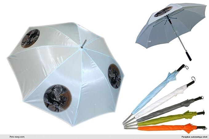 Paraguas de Golf, diseño de Cane Corso hembra: Amazon.es: Ropa y accesorios