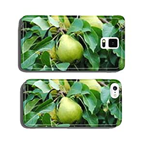 pear on tree cell phone cover case iPhone5