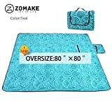 Large Picnic Blanket Tote Waterproof and Soft for Family Concerts,Park(200x200)