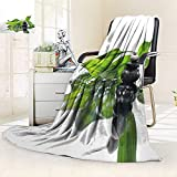 YOYI-HOME Warm Microfiber All Season Duplex Printed Blanket of a spa with Stones and a sprig of Green Bamboo Print Artwork Image/59 W by 47'' H