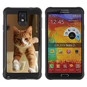 Suave TPU GEL Carcasa Funda Silicona Blando Estuche Caso de protección (para) Samsung Note 3 / CECELL Phone case / / Orange Cat American British Shorthair /