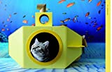 Cat Castles: 20 Cardboard Habitats You Can Build Yourself