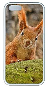 Cute funny squirre Easter Thanksgiving Masterpiece Limited Design TPU White Case for iphone 5/5S by Cases & Mousepads